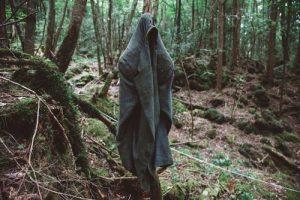 Tổng hợp những khu rừng đáng sợ nhất 2021