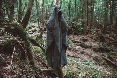 Rừng tự tử Aokigahara, Nhật Bản thiên đường của những kẻ cuồng chết