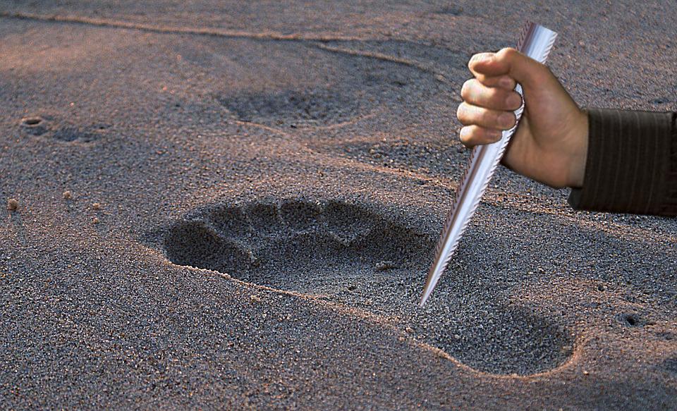 Dùng gai cá đuối đâm và dấu bàn chân