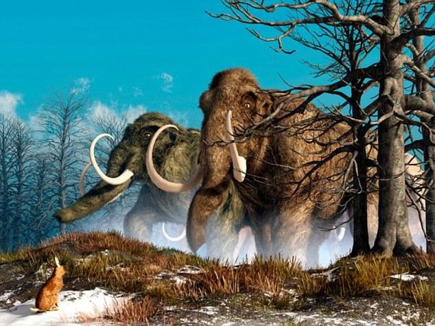 Voi Ma mút - Loài vật đã tuyệt chủng