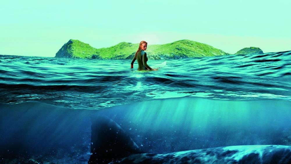 Cá mập và con người