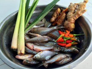 Cá Đồng Kho Nghệ Kho Tiêu – Món Ăn Dân Gian Việt Nam